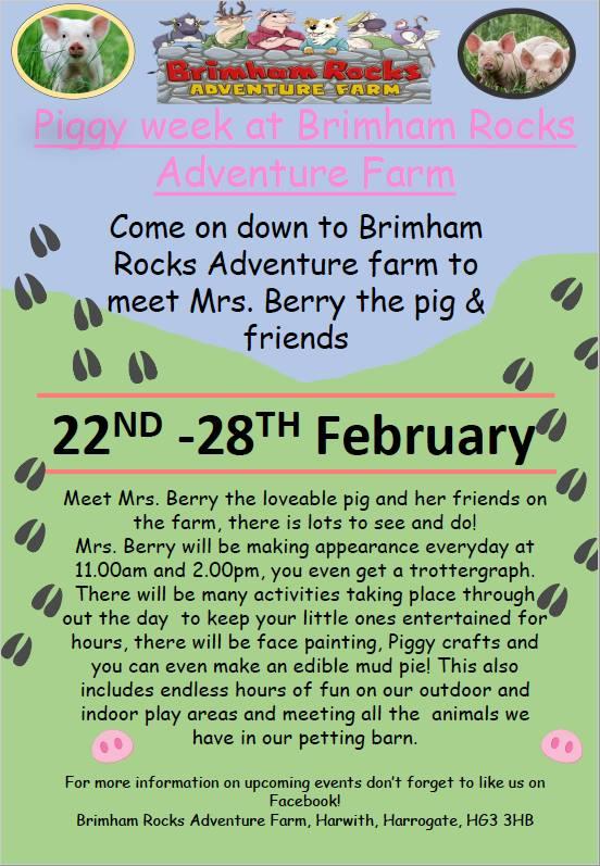 February Half Term Piggy Week at Brimham Rocks