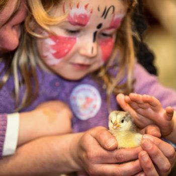 Farming fun for families at Springtime Live - 13th April
