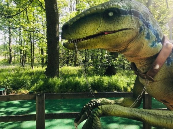 Jurassic Week at Stockeld Park 2019