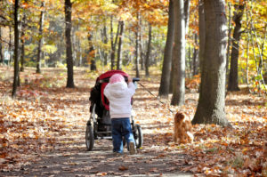 Child and dog friendly walks in Leeds