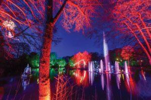 stockeld-park-enchanted-forest-mermaid-lake-illuminations